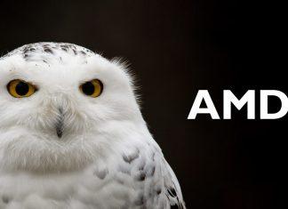 AMD Snowy Owl
