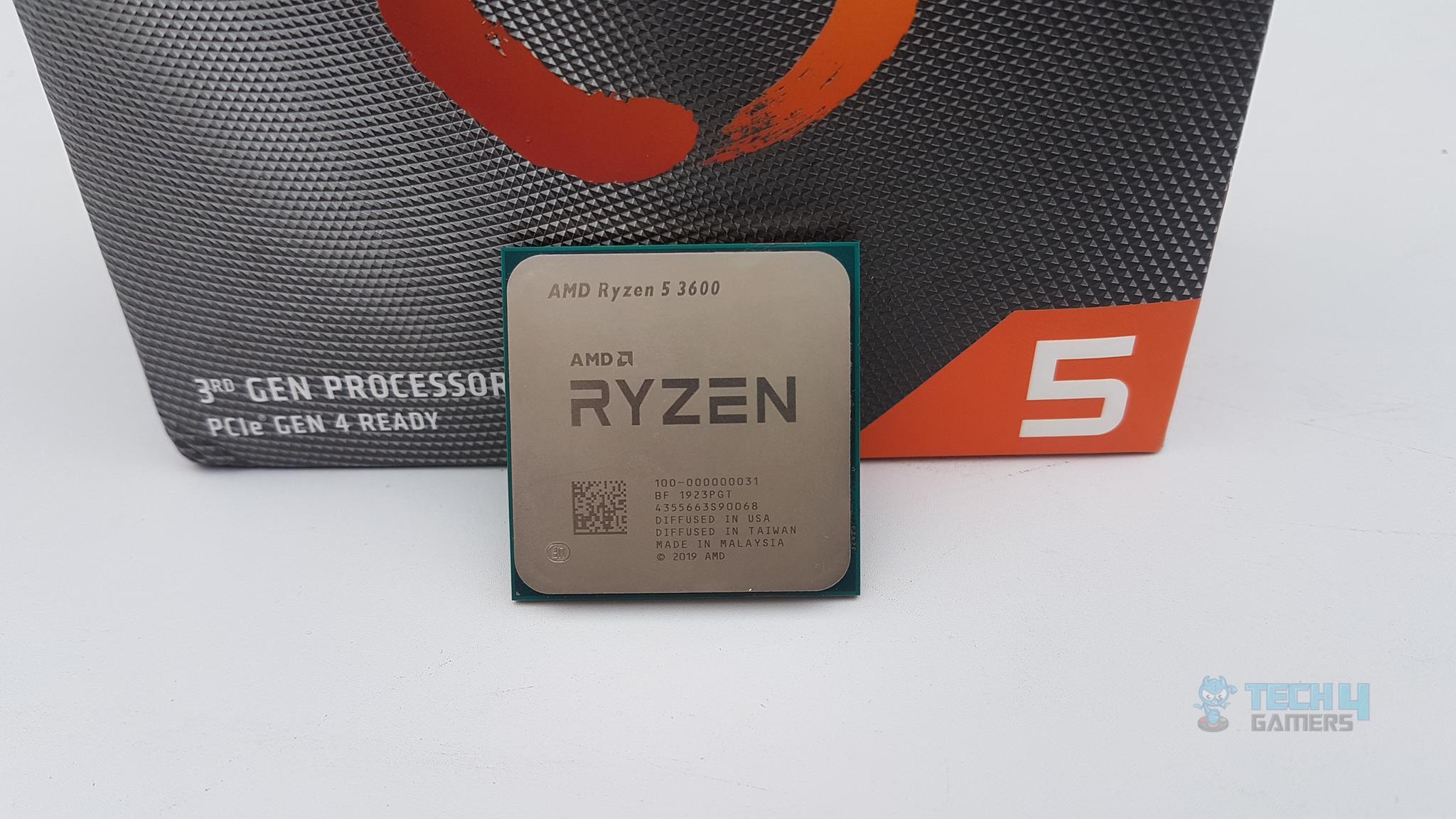 Amd Ryzen 5 3600 Review